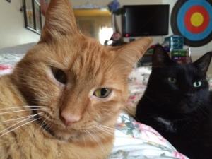 Angus and Jack